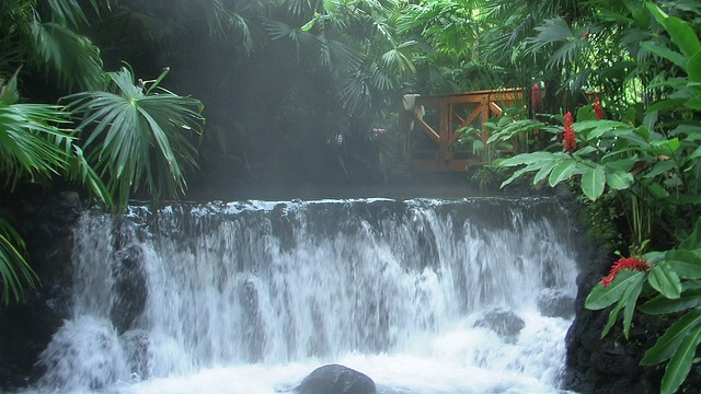 Une des superbes cascades du parc botanique de l'Arenal