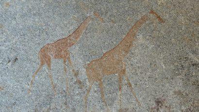 Représentation de girafes sur les roches granitiques des monts Matobo au Zimbabwe