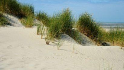 Dunes du Pas de Calais - Cote d'Opale